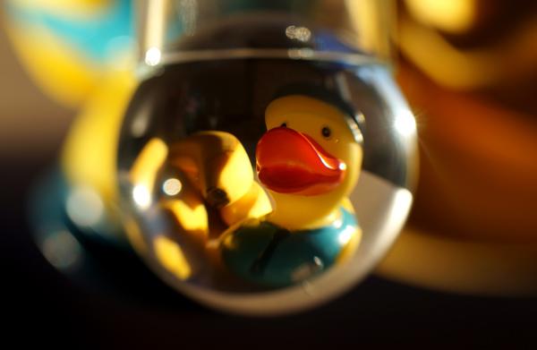 glazen-bol-11-weird-duck