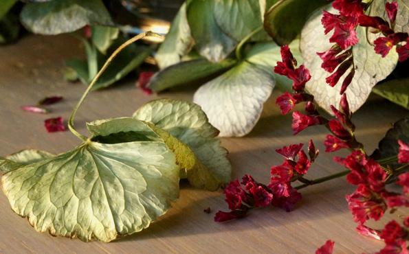 glazen-bol-9-hortensiabloemblad