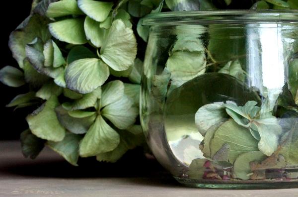 glazen-bol-17-hortensia-a